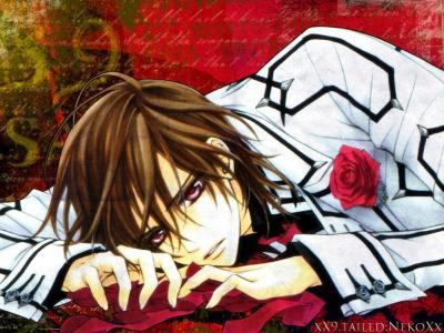 vampire knight38