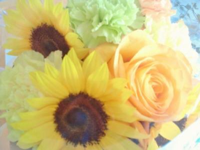 2011-6-19-1_convert_20110619133558.jpg