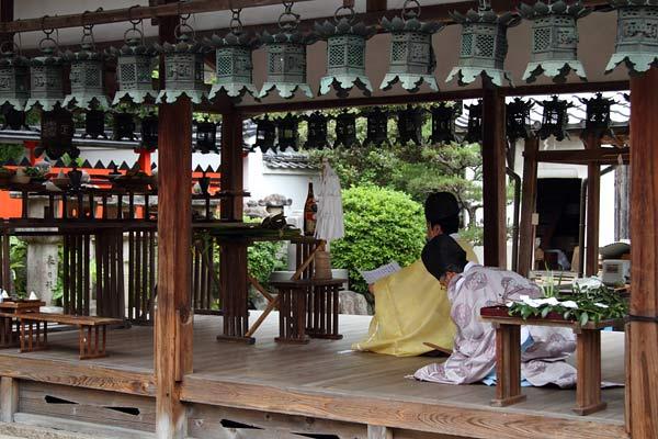 奈良豆比古神社 菖蒲祭2