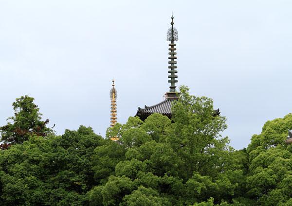 薬師寺 東塔1