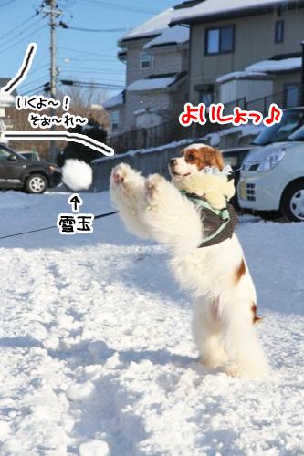 にー雪玉3の1