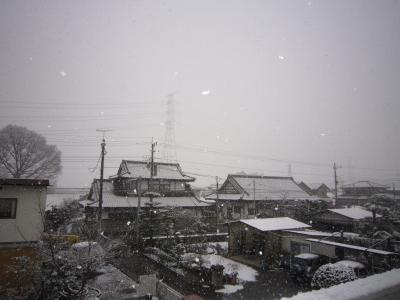 110211雪2