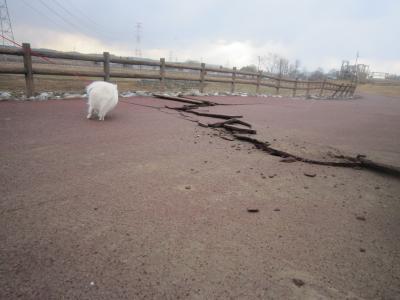 120311地震1