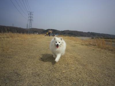 0410散歩15