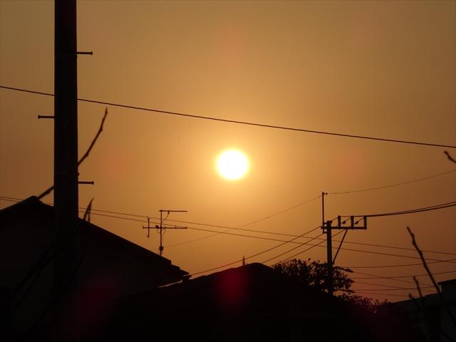 2014 朝陽