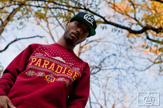 acapulco-gold-holiday-2011-lookbook-12.jpg