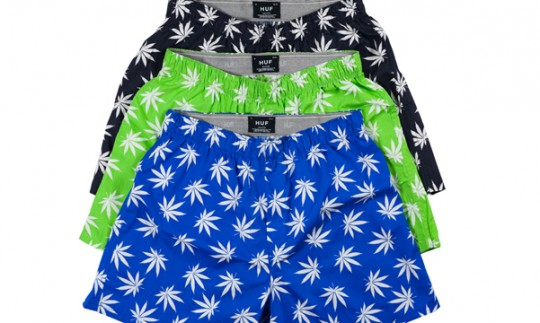 huf_plantlife_boxer_group-540x323.jpg