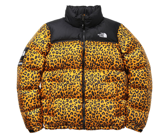 supreme-the-north-face-leopard-1.jpg