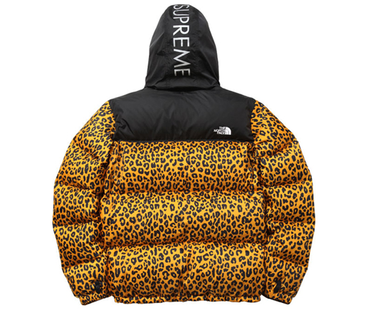 supreme-the-north-face-leopard-3.jpg