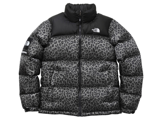 supreme-the-north-face-leopard-6.jpg