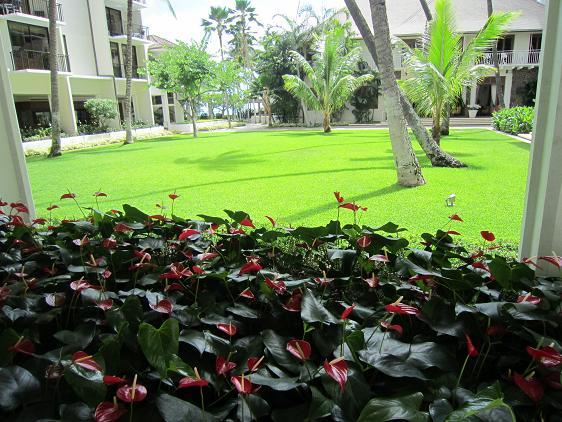 ホテル中庭1