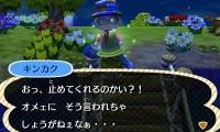 HNI_0048_JPG_20141020224554d46.jpg