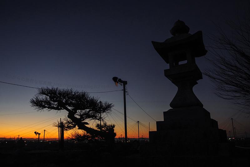 冬のたそかれ:稲荷山茶園