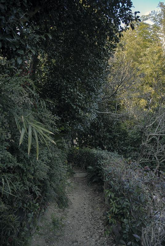 華蔵寺と花岳寺の小路