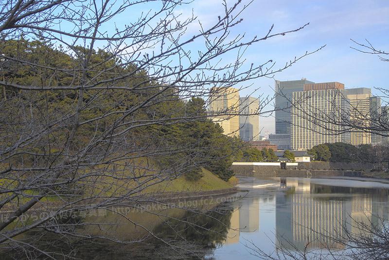 桜田門:遠景