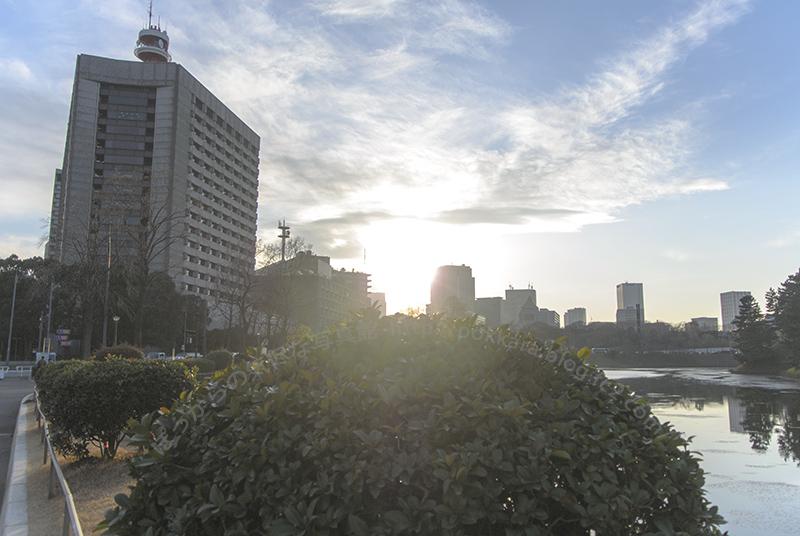桜田門から西日