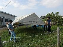 テント中1