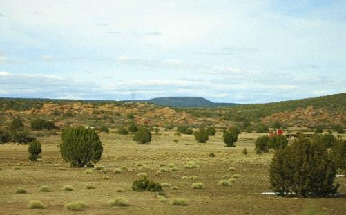 キングマンの砂漠