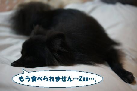 20110831_11.jpg