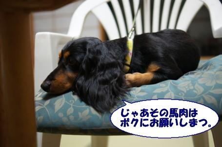 20110831_7.jpg