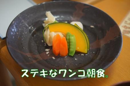 20110902_3.jpg