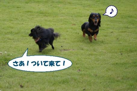 20110904_4.jpg