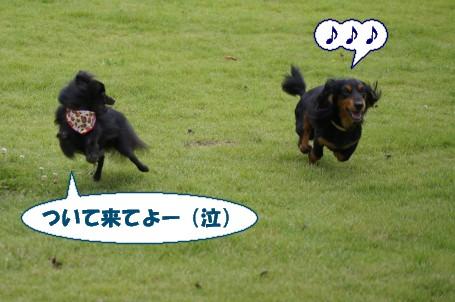 20110904_6.jpg