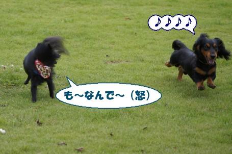 20110904_7.jpg