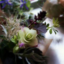 お花9-1