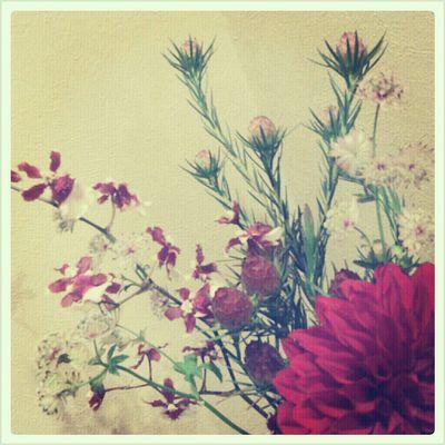 お花10-2