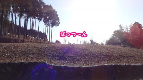 006_convert_20140115180059.jpg