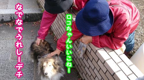 0987_convert_20140110191922.jpg