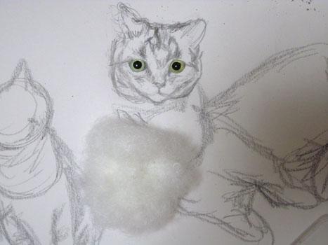 羊毛猫人形・顔のデッサン