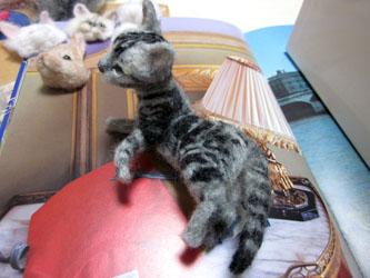 オーダー姉妹猫さん・お姉さんアングル4