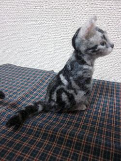 オーダー姉妹猫ちゃん・妹ちゃん植毛完3