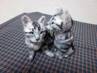 オーダー姉妹猫ちゃん・ひそひそ