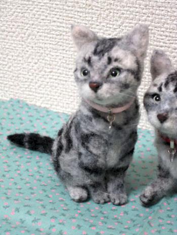 オーダー姉妹猫さん2