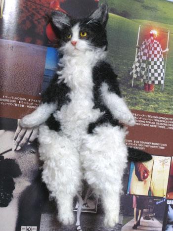 仔猫のマリー1