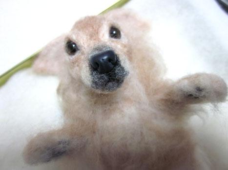 リングピロー犬・完成顔正面
