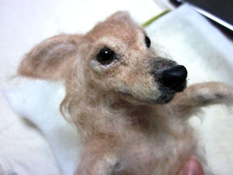 リングピロー犬・完成顔左斜め