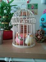 癒しの鳥グッズ♪