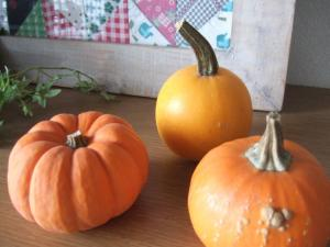 043かぼちゃ