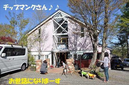 084_20111117124106.jpg
