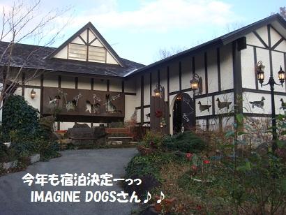 DSC06092 - コピー