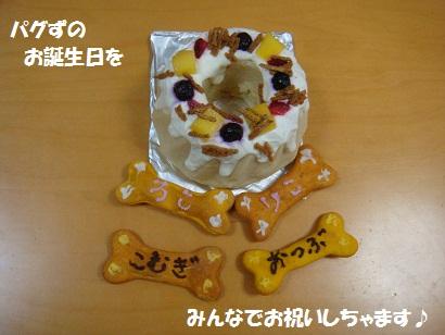 DSC00059 - コピー - コピー