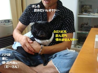 DSC00006_20120203214006.jpg