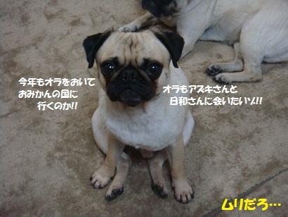 DSC00074_20120712045821.jpg