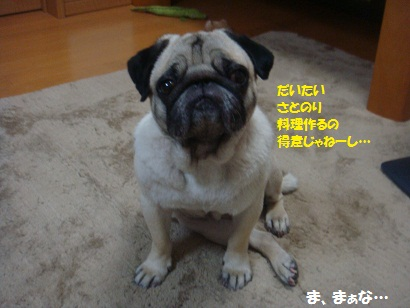 DSC00075_20120723030246.jpg