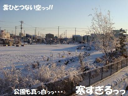 DSC00404_20120125025718.jpg