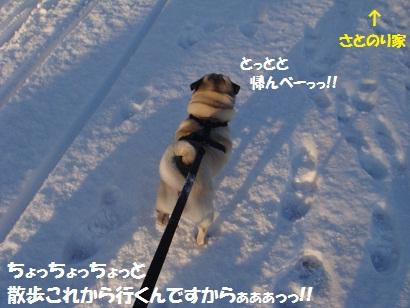 DSC00414_20120125025717.jpg